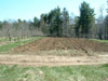Kelly Orchard Spring Planting 2006